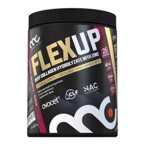 MUSCLE CLINIC FLEX UP 400g MALINA